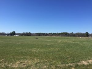 Soccer fields in Wrentham. I'll be spending a lot of time at this park these next six months, strengthening my legs through grass running.